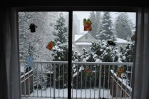 The view out of our patio doors