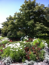 More of the gardens in the park