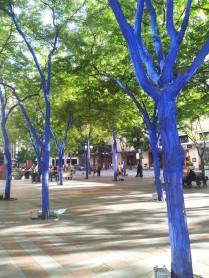 Amazing blue trees